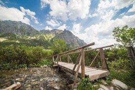 picjumbo.com_HNCK7678